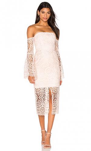 Платье с цветочными кружевами NICHOLAS. Цвет: розовый