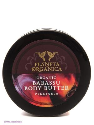 Масло для тела органическое бабассу, мгновенное влажнение 100 мл, PLANETA ORGANICA. Цвет: кремовый