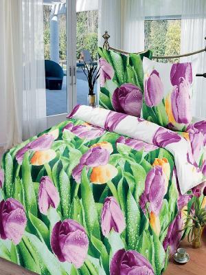 Комплект постельного белья Арт Постель. Цвет: зеленый, фиолетовый