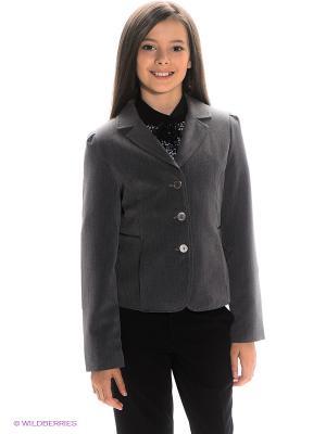Пиджак Stillini. Цвет: темно-серый