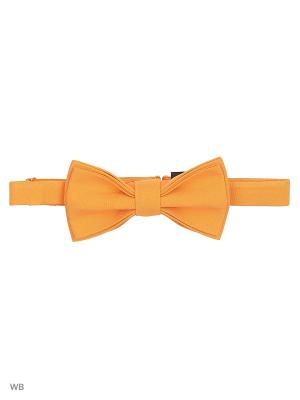 Галстук -Бабочка Magnetiq. Цвет: оранжевый
