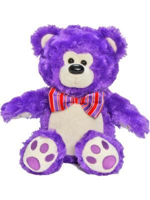 Мишка Мальчик, 21См 1Toy. Цвет: темно-фиолетовый