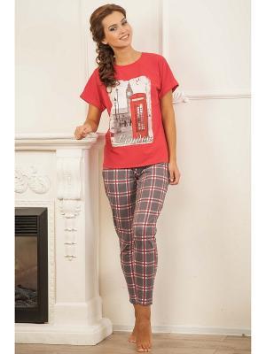 Комплект одежды CLEO. Цвет: красный