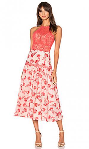 Floral jacquard midi dress Rebecca Taylor. Цвет: красный