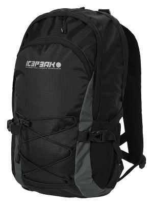 Рюкзак Icepeak. Цвет: черный