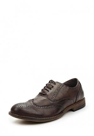 Туфли Piazza Italia. Цвет: коричневый
