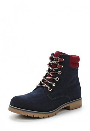 Ботинки Francesco Donni. Цвет: синий