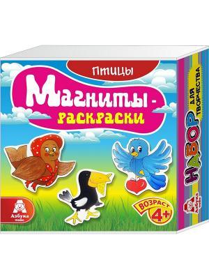 Магниты-раскраски Птицы Азбука Тойс. Цвет: розовый, желтый, голубой