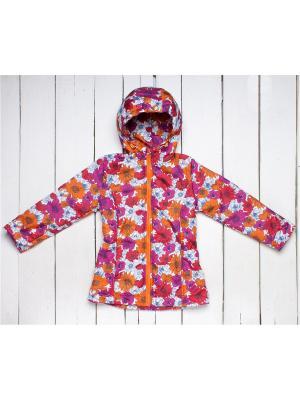 Куртка Arctic Kids. Цвет: малиновый, оранжевый