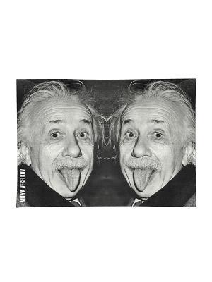 Обложка для паспорта Эйнштейн Mitya Veselkov. Цвет: черный, серый