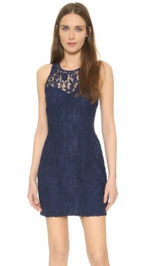 Кружевное платье Larelle без рукавов BB Dakota. Цвет: темно-синий