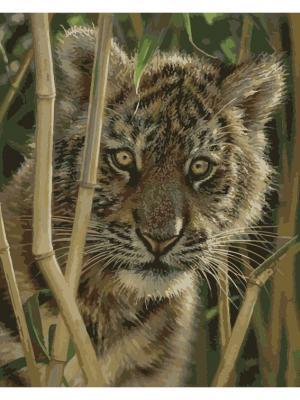 Набор для рисования (40*50)  Испуганный тигренок Menglei. Цвет: серый меланж