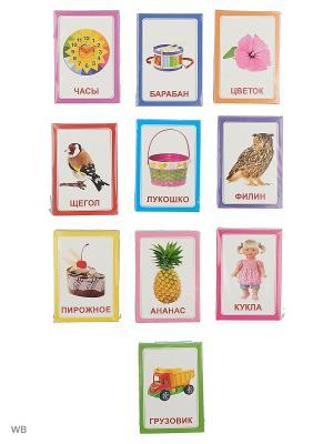 Подарочный набор Логопедический Вундеркинд с пеленок. Цвет: синий