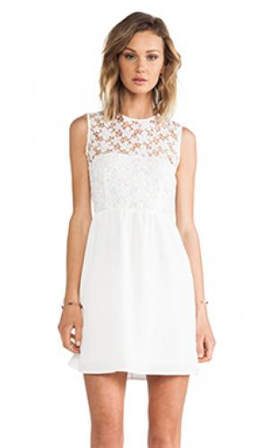 Кружевное платье MM Couture by Miss Me. Цвет: белый