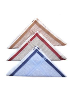 Носовой платок, 3 шт Lola. Цвет: синий, коричневый, серый