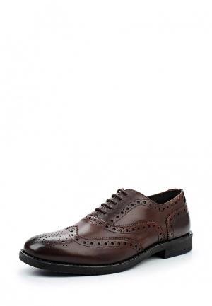 Туфли Paolo Vandini. Цвет: коричневый