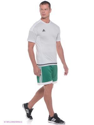 Шорты Tastigo 15 Sho Adidas. Цвет: зеленый