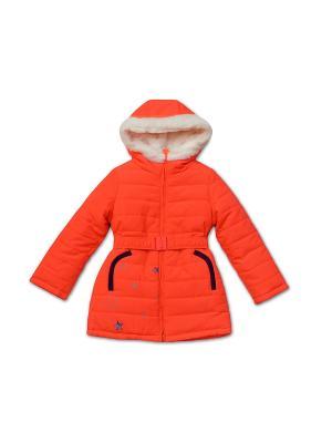 Пальто DONILO. Цвет: оранжевый