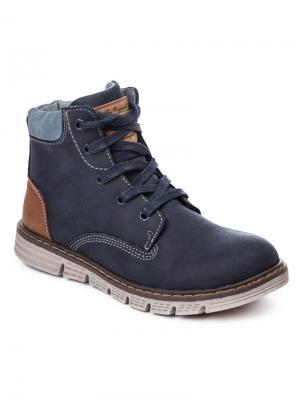 Ботинки S`Cool. Цвет: темно-синий, голубой, коричневый