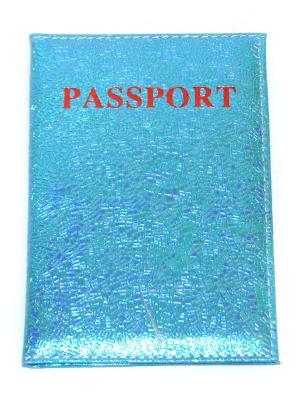 Обложка для паспорта Lola. Цвет: голубой
