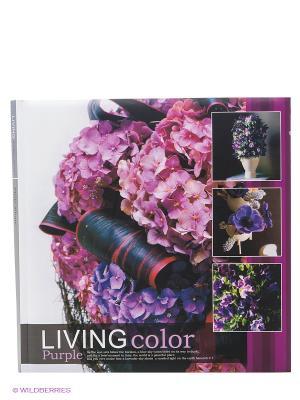 Фотоальбом Living Colour VELD-CO. Цвет: сиреневый