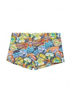 Шорты для плавания Nirey. Цвет: разноцветный