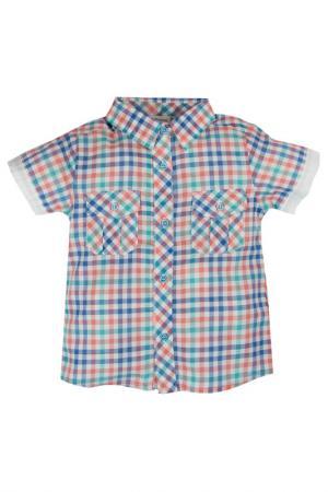 Рубашка BOSSA NOVA. Цвет: розовый