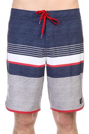 Шорты пляжные DC Battery Park Grey Shoes. Цвет: серый,синий,белый,красный
