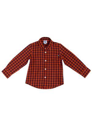 Рубашка CHICCO. Цвет: красный