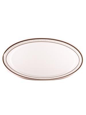 Блюдо овальное 15,5*28 см Кассие Royal Porcelain. Цвет: белый