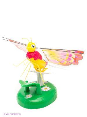 Летающая Бабочка Lily Papillon Splash Toys. Цвет: красный, зеленый