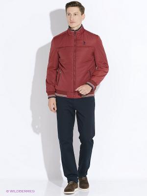 Куртка U.S. Polo Assn.. Цвет: бордовый