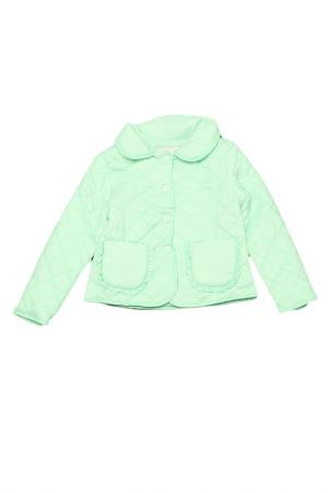 Пиджак Silvian Heach. Цвет: зеленый