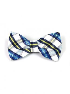 Галстук-бабочка Churchill accessories. Цвет: черный, синий, лазурный, серо-голубой, светло-желтый, желтый, белый