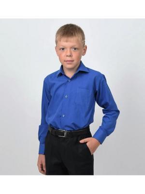 Рубашка  для мальчика HERDAL. Цвет: синий