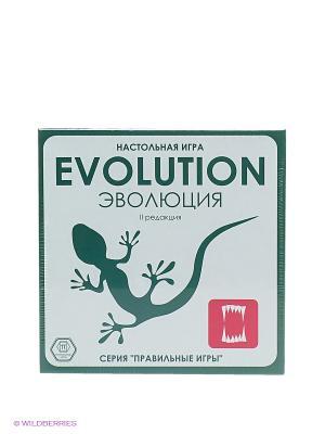 Настольная игра Эволюция (базовый набор) Правильные игры. Цвет: зеленый