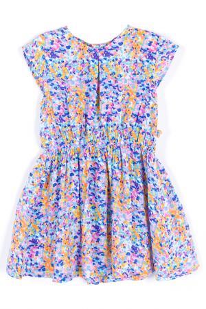 Платье Coccodrillo. Цвет: синий, розовый, оранжевый