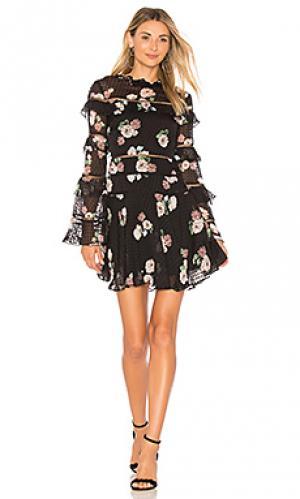 Платье ruffle rose NICHOLAS. Цвет: черный