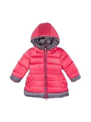 Куртка Coccodrillo. Цвет: розовый