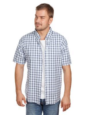 Рубашка Oxford McNeal. Цвет: темно-синий, голубой