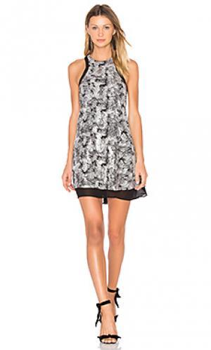 Платье-футляр whitney NBD. Цвет: уголь