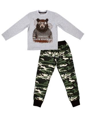 Свитшот, брюки Апрель. Цвет: серый, коричневый, хаки