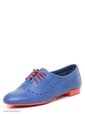 Ботинки Sinta Gamma. Цвет: синий, красный