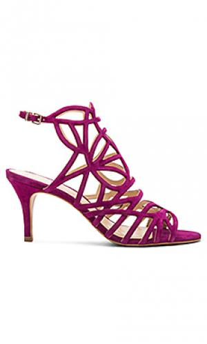 Туфли на каблуке pelena Vince Camuto. Цвет: фуксия