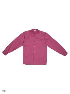Рубашка Аэлита. Цвет: лиловый