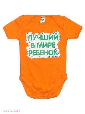 Боди для детей Ехидна. Цвет: оранжевый