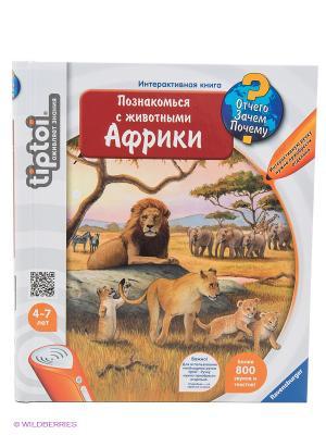 Книга Познакомься с животными Африки Ravensburger. Цвет: светло-голубой, оранжевый