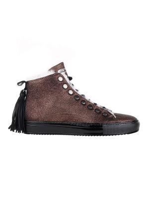 Ботинки BARRACUDA. Цвет: бронзовый