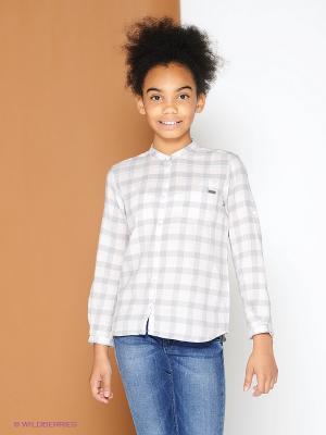 Рубашка PEPE JEANS LONDON. Цвет: серый, бледно-розовый