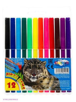 Набор фломастеров 12 цветов Centrum. Цвет: черный, синий, темно-зеленый, коричневый, голубой, сиреневый, фиолетовый, красный, оранжевый, розовый, желтый